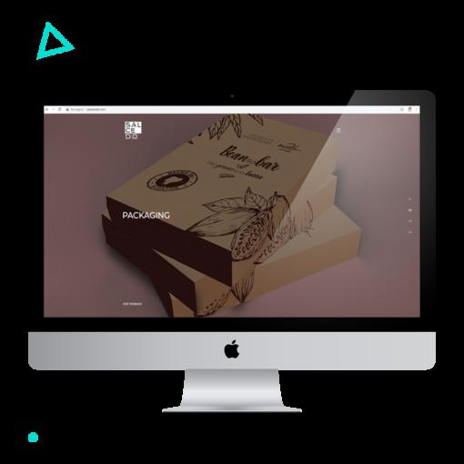 hacer-pagina-web-precio4